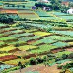 <b>Высокогорный курорт Вьетнама -  Далат</b>