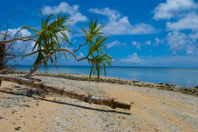 Маршалловы острова-труднодоступная экзотика-4