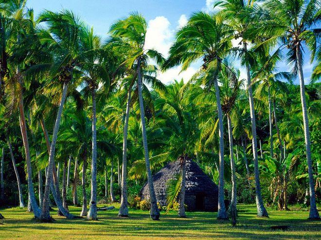 Новвая Каледония экзотика с французским шармом-2