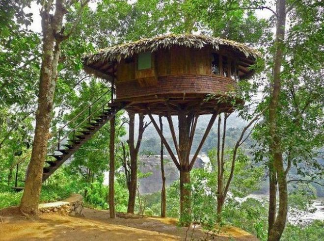 Папуа-Новая Гвинея - обитель райской птицы14