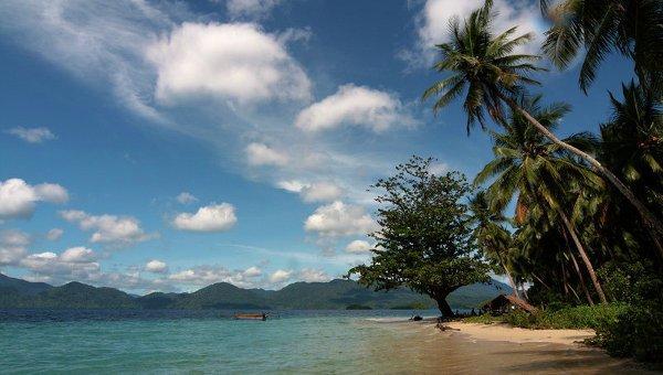 Папуа-Новая Гвинея - обитель райской птицы6