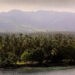 Папуа-Новая Гвинея – обитель райской птицы