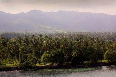 Папуа-Новая Гвинея - обитель райской птицы8