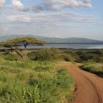 Центральноафриканская Республика: что посмотреть