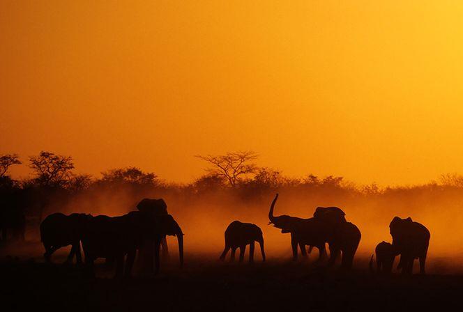 Намибия всё великолепие Африки-11
