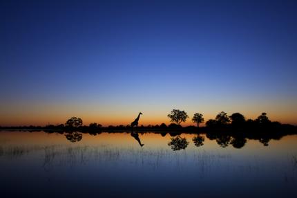 Национальные парки Нигерии-5