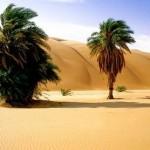 Уникальные достопримечательности Мавритании-15