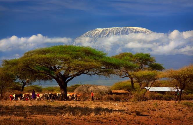 Кения-Белая гора-12