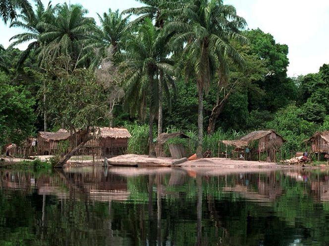 Конго (Киншаса) буйство природы и экзотика-7