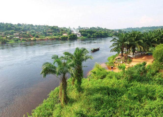 Конго (Киншаса) буйство природы и экзотика