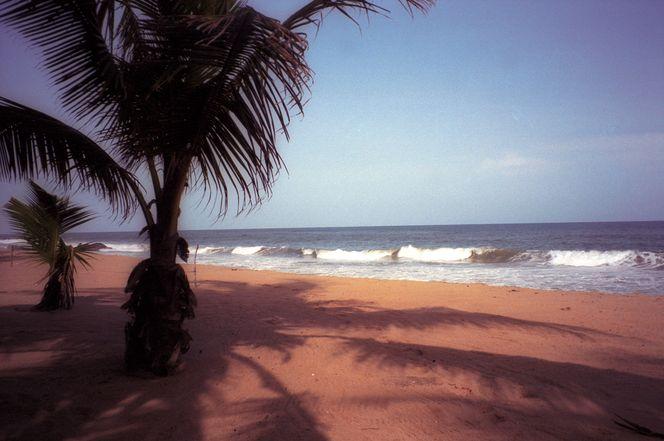 Кот-дИвуар европейский комфорт и дикая природа-8