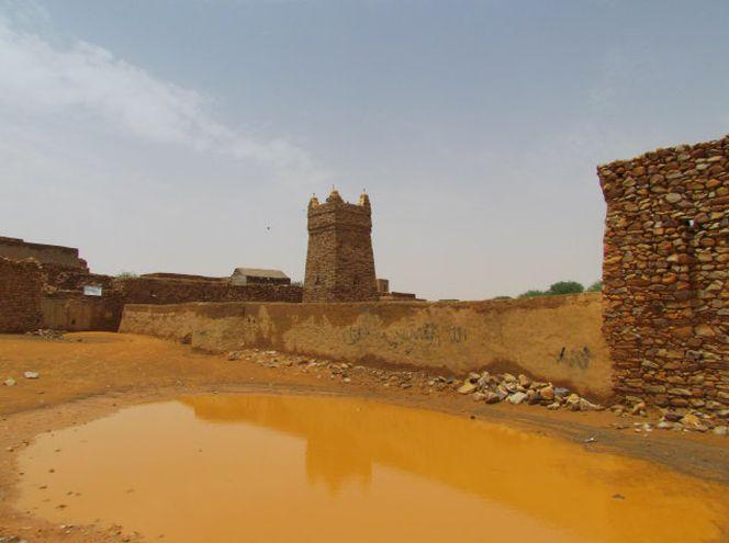 Жемчужины Западной Сахары-21