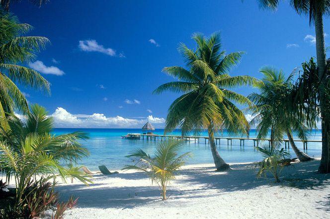 Муреа и Рангироа - достойные представители Французской Полинезии-1