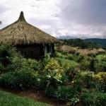 Папуа-Новая Гвинея. Открываем неизведанные территории-2