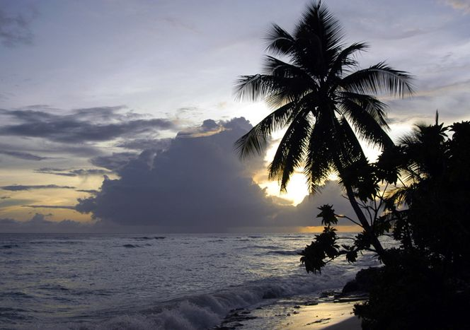 Развлечения на Науру-16