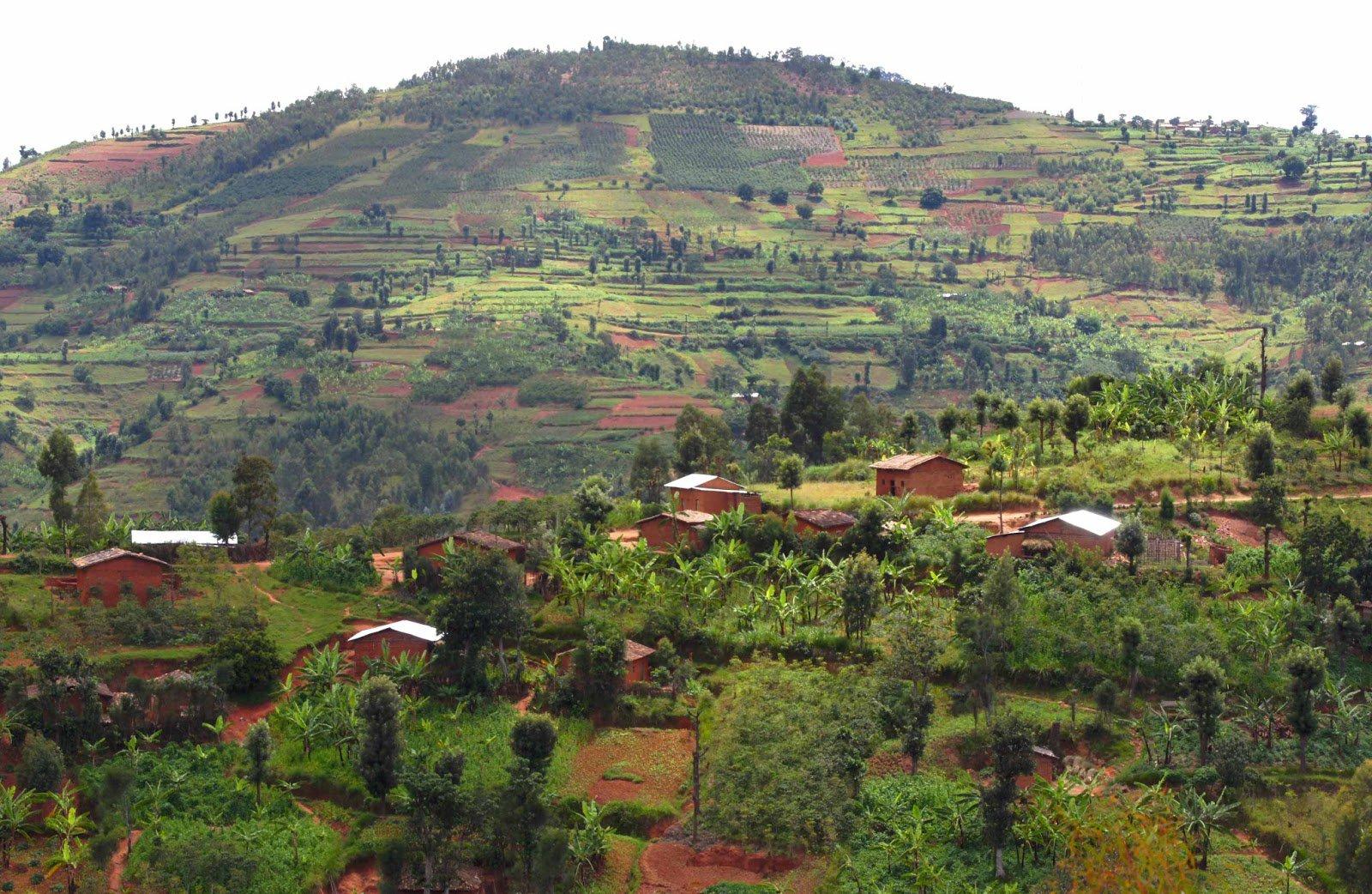 Что собой представляет государство Бурунди?