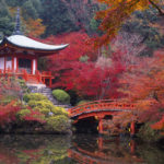Самые популярные заблуждения о Японии